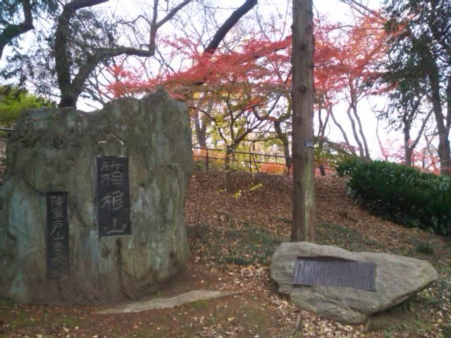 箱根山の碑と紅葉
