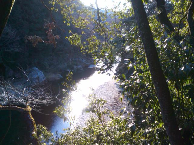 冬の秋川渓谷