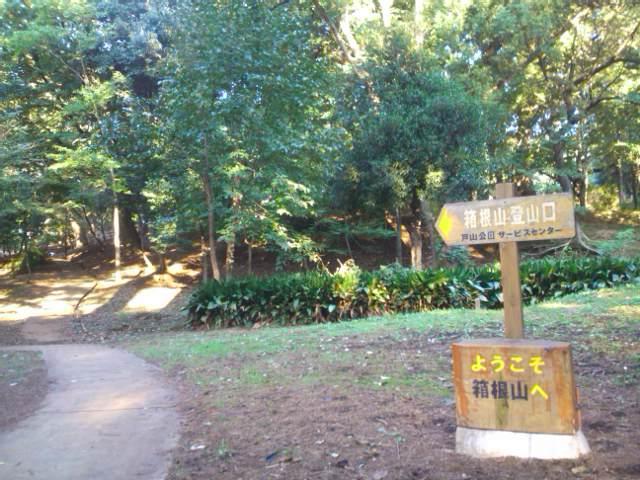 箱根山西側の登山口
