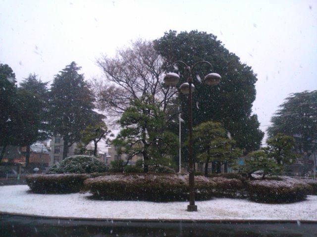 春なのに〜