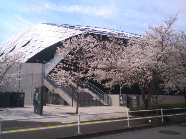 新アリーナと桜